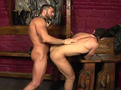 Handsome hairy studs fucking in a dark dungeon in this video mature gay fuck