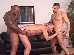 Gay Bareback Tony Serrano, Adam Mansfield & Tony London mature gay fuck