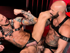 Colored ink, muscle, fur and pecker compete for your attention as Drew Sebastian and Dolf Dietrich lie entwined, making out and exploring their massive flesh. Each wears a harness and a leather jock strap with a pecker opening. Drew leans over to suck Dol mature gay fuck